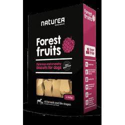 Naturea Biscuits Forest...